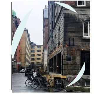 dk_office